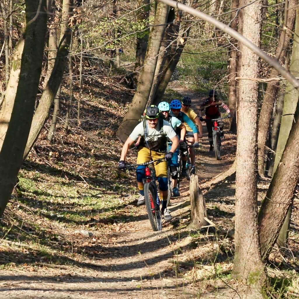 MTB Trailcamps Bayerischer Wald