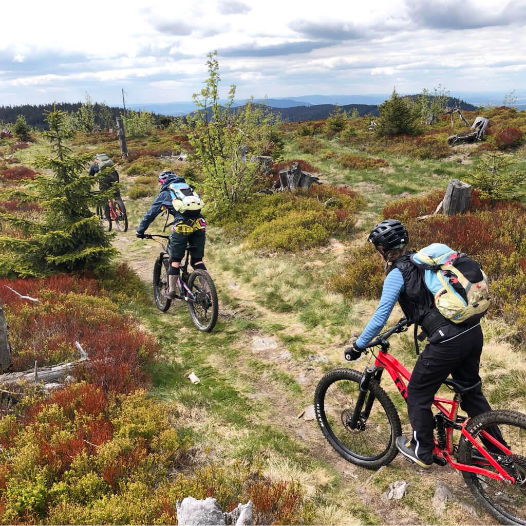 Eine Teilnehmerin beim Bike Camp im Altmühltal verbessert ihre Mountainbike Fahrtechnik beim Abrollen einer Stufe