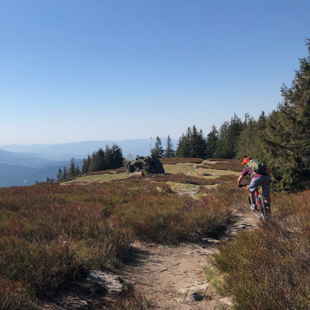 Mountainbiker am Osser bei den Mountainbike Reisen Bayerischer Wald