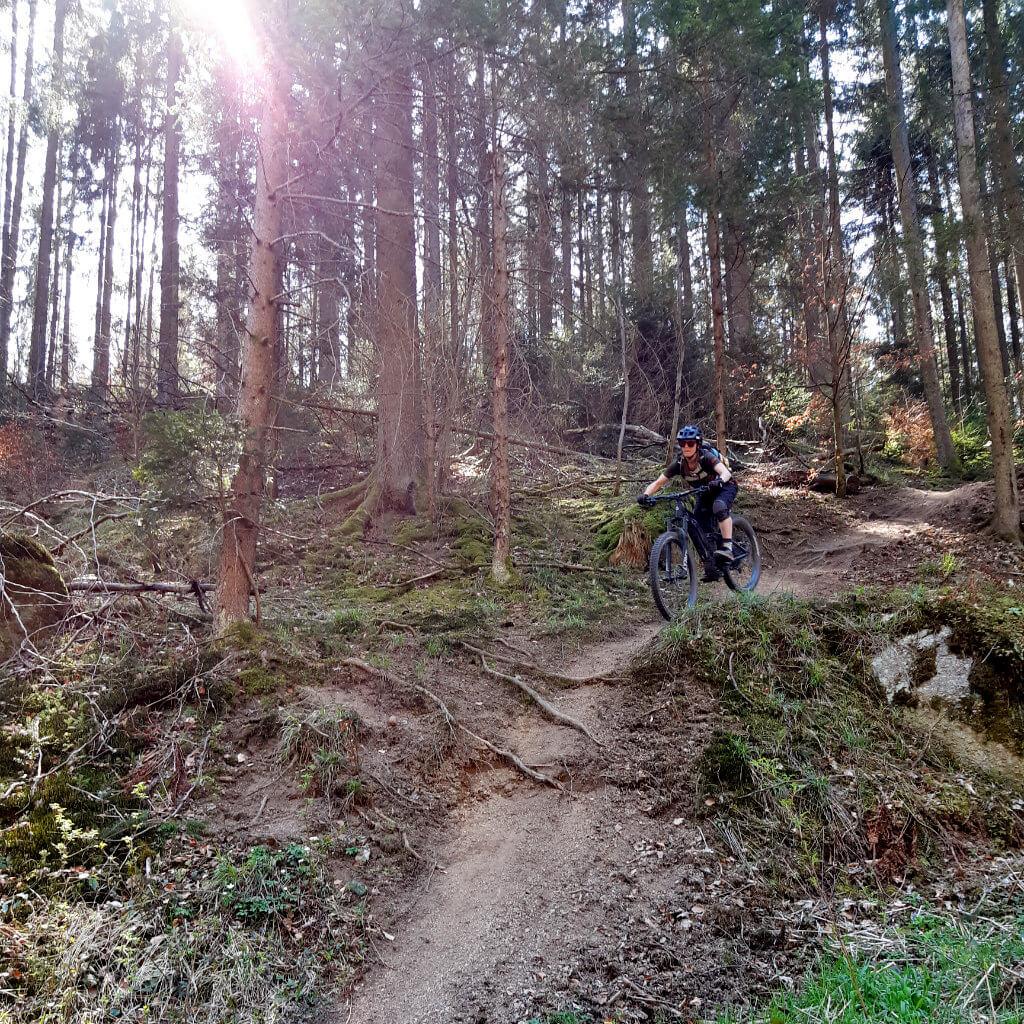 Anspruchsvolle Trails sind bei den Mountainbike Reisen Bayerisher Wald keine Seltenheit