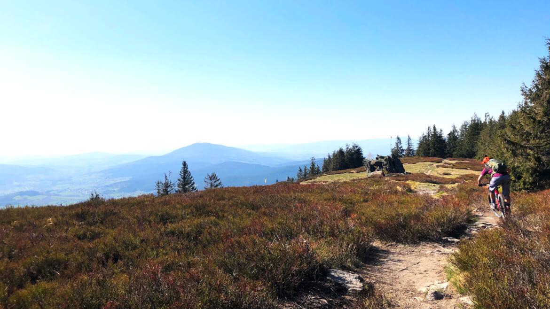Mountainbiken nahe der tschechischen Grenze bei den Mountainbike Reisen Bayerischer Wald