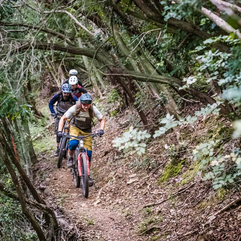 Trailspass bei den Mountainbike Reisen in der Toskana