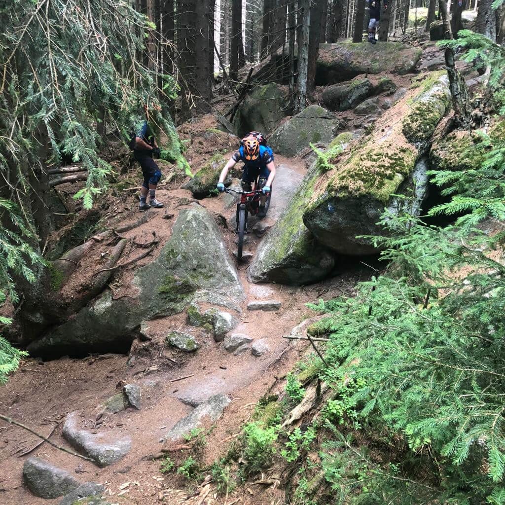 MTB Trailcamps am Ochsenkopf im Fichtelgebirge