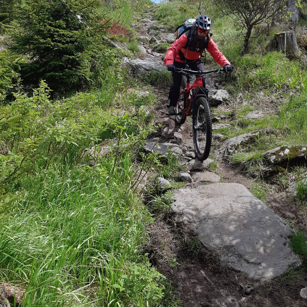 Nicht nur Wurzeln sonder auch Steine gibt es auf den Singletrails des MTB Kurztrips im bayerischen Wald