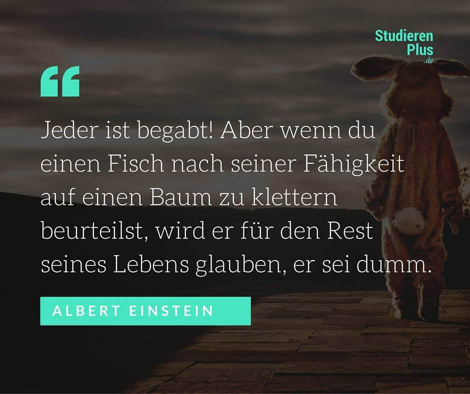 Zitat Einstein