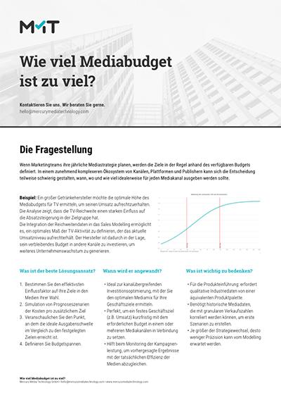 Wie viel Mediabudget ist zu viel?