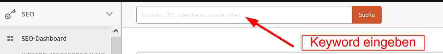 Keyword eintippen bei SEMrush