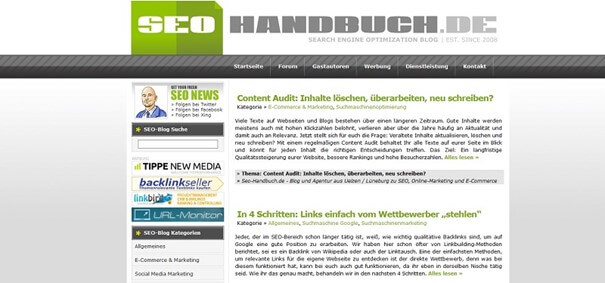 SEO Handbuch Beratung