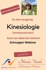 November, 16. Schnupper Webinar VVK VenohrVitalKinesiologie