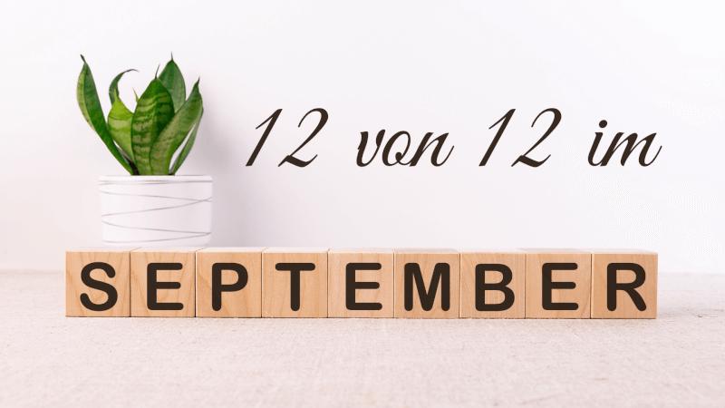 12 von 12 im September - tierisch war es heute!